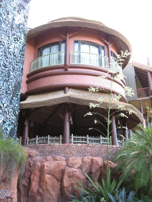 Random pic of the lodge - wonder if that's someone's room
